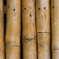 Murals Your Way - Bamboo (English) Wall Art - A section of bamboo fence makes an interesting wall mural