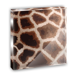 """Made on Terra - Giraffe Print Impressions Mini Desk Plaque and Paperweight - You glance over at your miniature acrylic plaque and your spirits are instantly lifted. It's just too cute! From it's petite size to the unique design, it's the perfect punctuation for your shelf or desk, depending on where you want to place it at that moment. At this moment, it's standing up on its own, but you know it also looks great flat on a desk as a paper weight. Choose from Made on Terra's many wonderful acrylic decorations. Measures approximately 4"""" width x 4"""" in length x 1/2"""" in depth. Made of acrylic. Artwork is printed on the back for a cool effect. Self-standing."""