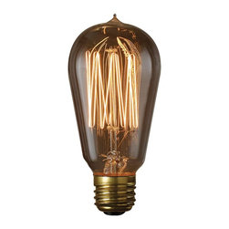 Bulbrite - Bulbrite 40W Squirrel Cage Incandescent Edison Light Bulb - 6 pk. Multicolor - B - Shop for Light bulbs from Hayneedle.com! Search no more for the perfect antique look - you've found the Bulbrite 40W Squirrel Cage Incandescent Edison Light Bulb - 6 pk.. These classic bulbs add a touch of vintage elegance to a variety of fixtures both modern and antique. Dimmable capability allows you to get the ideal level of light in any situation.About BulbriteBulbrite is a family-owned company started in 1971 and based in Moonachie New Jersey. Bulbrite is renowned for their commitment to innovation education and service. They are a leading manufacturer and supplier of innovative energy-efficient light source solutions. Bulbrite is an award-winning company. Most recently their president Cathy Choi received the 2010 Residential Lighting Industry Leadership Award and the Bulbrite Swytch LED Desk Lamp received the 2010 Home Furnishing News Award of Excellence. They have introduced award-winning products and offer an extensive line of light bulbs including LEDs HID compact fluorescents fluorescents halogens krypton/xenon incandescent bulbs and specialty lamps. Bulbrite is an active member of the ZHAGA the American Lighting Association a silver sustaining member of the Illuminating Engineering Society of North American (IESNA) an Energy Star Partner a Lighting Facts LED Product Partner a member of LUMEN Coalition and a member of the International Dark Sky Association.