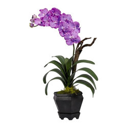 Vanda with Black Hexagon Vase Silk Arrangement - A perfect recreation of one of nature's most sought-after flowers, this delicate Vanda has it all. Symmetrical, cascading green leaves? Check. Soft bloom delicately climbing skyward? Check. No need for water or care? Check. And this beautiful flower comes in a striking hexagon black vase with faux moss, giving it a bold mix of colors that will draw the eye and please the senses. Height= 24 in x Width= 14 in x Depth= 6 in