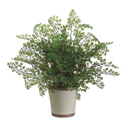 Silk Plants Direct - Silk Plants Direct Maidenhair Fern (Pack of 8) - Silk Plants Direct specializes in manufacturing, design and supply of the most life-like, premium quality artificial plants, trees, flowers, arrangements, topiaries and containers for home, office and commercial use. Our Maidenhair Fern includes the following: