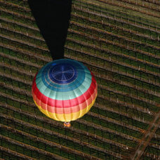 Hot Air Balloon Flying Over Vineyards, Napa Valley, USA Photographic Print by Le