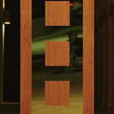 Modern Front Doors by Ivan Industries