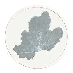 Framed Sea Fan 24 Round in Blue Haze - Choose a wall in your home with an intriguing color and bring that favorite shade to life by hanging a round sea fan artwork on it.  Authentic sea fans are carefully selected and prepared to serve as the focal of these artworks, then pressed between panes of glass to preserve and display them.  A hand-finished silver frame surrounds the sea fan, letting you enjoy oceanic texture along with the unique pleasure and appeal of round wall art.