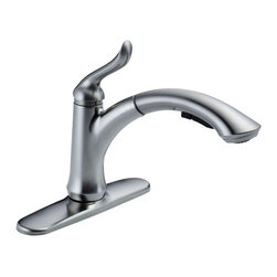 Delta Single Handle Water-Efficient Pull-Out Kitchen Faucet - 4353-AR-DST - The design was inspired by a strong presence in nature like that of tree with reaching branches.