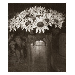 """Sunflowers, Limited Edition, Photograph - This is part of my series on flowers and botanicals. I find when I feel need for a change from my street documentary work I go back to flowers and when I need a change from my flowers I go back to my documentary street photography. The image is 10""""x12"""" printed on 13""""x19"""" Hahnemuhle Fine Art Baryta."""