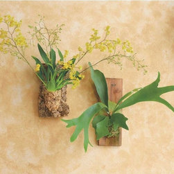 Living Wall Art - These cork-mounted flowers mimic a vertical garden in a subtle and simple way.