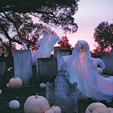 Traditional  Seasonal:Halloween