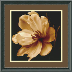 """Timeless Grace III"" Framed Print by Charles Britt"