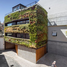 Green Walled Home Features Different Plants for Each Area | Designs & Ideas on D