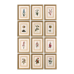 Uttermost - Flower of the Month Floral Art, Set of 12 - This is certainly one way to learn about flowers. And you'll know what flowers to order for someone's birthday with this set of twelve framed prints. The gold leaf frames are washed with a gray glaze. Hang them together or separate them. You might think you're living in a botany lab!