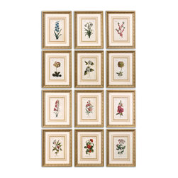 Uttermost - Flower of The Month Floral Art Set of 12 - This is certainly one way to learn about flowers. And you'll know what flowers to order for someone's birthday with this set of twelve framed prints. The gold leaf frames are washed with a gray glaze. Hang them together or separate them. You might think you're living in a botany lab!