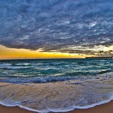 Tropical Artwork by DG Photo Art & Design