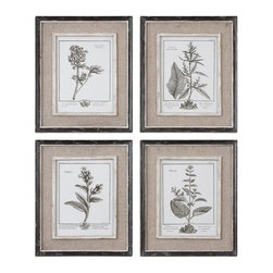 Uttermost - Uttermost Casual Grey Study Framed Art Set of 4 32510 - Prints are surrounded by light tan burlap mats. Frames have a heavily distressed black finish with a gray and taupe wash. The inner lips and liners have a Medium size:ium wood tone base with heavily distressed painted white finish with a gray & taupe glaze.