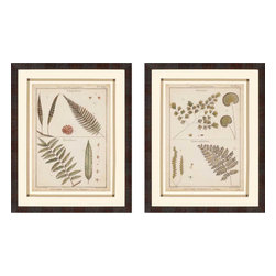Paragon - Antique Ferns II PK/2 - Framed Art - Each product is custom made upon order so there might be small variations from the picture displayed. No two pieces are exactly alike.