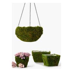 Jamali Garden - Moss Hanging Basket & Square Moss Pots | JamaliGarden -