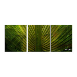 Ready2HangArt - Ready2HangArt Alexis Bueno 'Palms' 3-piece Canvas Wall Art - This tropical abstract canvas art set is the perfect addition to any contemporary space. It is fully finished, arriving ready to hang on the wall of your choice.