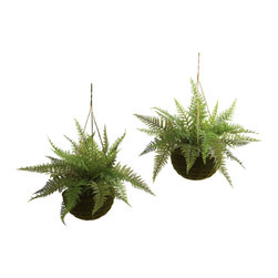 "Nearly Natural - Nearly Natural Leather Fern with Mossy Hanging Basket (Indoor/Outdoor)-Set of 2 - The fern is an ideal ""hanging basket"" plant. The ""delicate but full"" leaves are seemingly made to spill out and over a pot, and the fresh look really brings home the sense of nature. This is a set of two leather ferns, complete with stunning ""mossy-look"" hanging baskets. Best of all, they are suitable for outdoors (as well as inside), meaning your decorating options are numerous (and year-round). Makes a great gift, too."