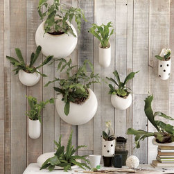 West Elm - Shane Powers Ceramic Wall Planters - I can never have enough green inside (or outside) of my house. I love the versatility of these planters, and I am a big fan of living walls. The different shapes and sizes plus the textures of different plants would make for great art on my walls.