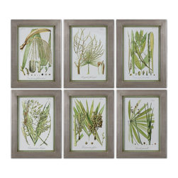 Uttermost - Uttermost Palm Seeds Framed Prints, Set of 6 41515 - Champagne silver leaf frames with Medium size:ium green inner lips with a brown and gray wash. Prints are under glass.