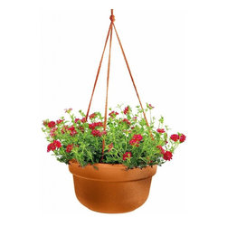 Bloem - Bloem 12in Dura Cotta Hanging Basket Terra Cotta DCHB1246, 12 pack - Plastic planters offer affordable beauty without heavy weight or risk of breakage.