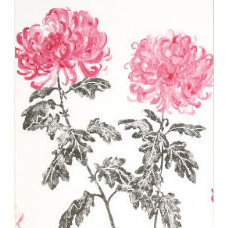 Wallpaper by Designers Guild