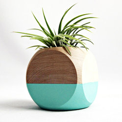 Cube Planter in Teal - Color blocking isn't just for people; plants can get in on the action as well. Crafted specifically for air plants, this cube planter has been hand-painted with a teal paint for a look that is both rustic chic and modern. Each planter comes with a single Tillandsia ionantha plant that blushes a pleasant reddish pink in bloom.