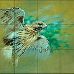 The Tile Mural Store (USA) - Tile Mural - Hawk In Flight - Kitchen Backsplash Ideas - This beautiful artwork by Alan Hunt has been digitally reproduced for tiles and depicts a hawk in flight.  Images of birds of prey on tiles are great to use as a part of your kitchen backsplash tile project or your tub and shower surround bathroom tile project. Pictures of eagles on tile and images of owls on tiles make a great kitchen backsplash idea and are excellent to use in the bathroom too for your shower tile project. Consider a tile mural of hawks and eagles for any room in your home where you want to add interest to a plain tile wall area.