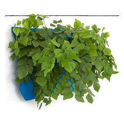 Wally One Outdoor Wooly Pocket - Hang these plant pockets on a wall, add plants and voila — a vertical garden! They're a cool alternative to planters. Oh, and they're made in the USA from 100 percent recycled plastic water bottles, too.