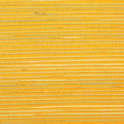 Walls Republic - Rush Regular Orange Grass Cloth Wallpaper, Double Roll - Rush wallpaper creates a warm, interesting backdrop for many different types of decor. Made from natural, sustainable materials, it is considered an environmentally friendly choice.