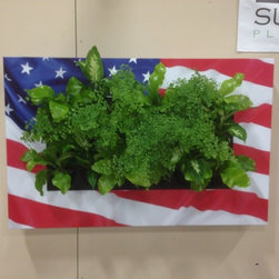 LivePicture RemPlant USA -