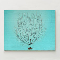 Birch Print, Black Coral - Incorporate natural elements into your home with this vibrant piece of art. Black coral and an aqua background on birch wood make for the best underwater combination.