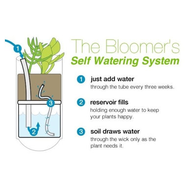 The Bloomer series - Hanging Gardens - The Bloomer features a self-watering reservoir, easy watering every three weeks.