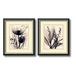 Amanti Art - Judith McMillan 'Lotus and Grasses / Lily of the Valley- set of 2' Framed Art Pr - Delicate detail that was once hidden is revealed in this floral x-ray set of Lotus and Lilies by Judith McMillan.