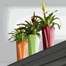 Contemporary Indoor Pots And Planters by cleanairgardening.com