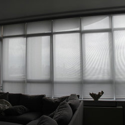 Ian in Williamsburg Solar Shades and Roman Shades - Ian was looking to cut down on the heat and protect his furniture from fading over time.  He went with a simple solar shade with a cassette valance and a  fabric wrapped bottom bar to keep his living room looking clean and simple.