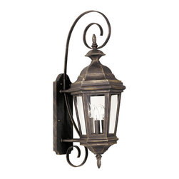 Design Craft - Oscar Medium Wall Lantern - Traditional style is the feature in this aluminum wall lantern. Lights shine through clear glass panels set into this quaint wall-mounted fixture that comes set into a swirling decorative bracket. Choose between an antique patina or a black finish.