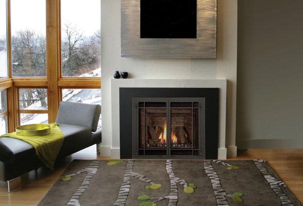 Contemporary Living Room by CJ's Home Decor & Fireplaces