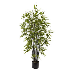 Nearly Natural - Nearly Natural 4' Black Bamboo Tree - The Black Bamboo gets its name from its jet black bamboo chutes, and is one of the most sought-after bamboo plants. This perfect reproduction beautifully captures everything that makes the black bamboo special, from the straight black chutes to the deep green explosion of the bamboo leaves. This will make a striking decoration for any home or office, and also makes an eclectic gift as well.