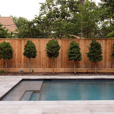 Contemporary Pool by Stetzer Builders