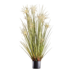 "Pier Surplus - Artificial 43"" Reed Grass w/ Black Pot - ""White Flower"" #HD222558 - Made from the highest-quality materials, its delicate leaves and cattails will fool the most discerning eye while freeing you from watering and care usually needed by this water-loving species. At 43 in. tall and with its interesting and beautiful textures, you're sure to love this faux plant in your home."