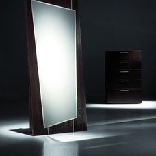 modern mirrors by AllModern