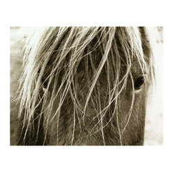 Kathy Kuo Home - Hyden Rustic Lodge Modern Blonde Horse Photo Wall Art - Unframed - A haunting, mysterious stranger awaits, you lock eyes unaware of what the other is thinking, only knowing that this moment is fleeting, rare, uncommon. The feeling of being so close to something untamed and powerful is evoked every time you gaze upon this powerful image. Custom made to order it's a study of texture, light and humility all in one.