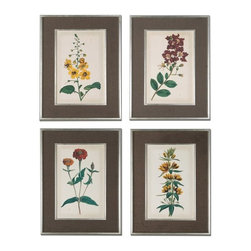 Grace Feyock - Grace Feyock Floral Varieties Traditional Wall Art X-39314 - Prints are accented by dark brown, nubbly and loosely woven linen mats. Frames and matching fillets have a silver leaf base with light champagne wash.