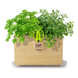 Architec Housewares™ - Homegrown Gourmet Products™ Harvest Window Box - Cedar Grow Box with Herb Snip and Clear Saucer. Made in USA!