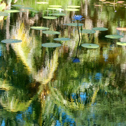Undulations - Color Photography Limited Edition Print - Tropical reflections create a Monet like impression.