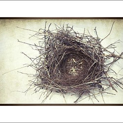 "Lupen Grainne Framed Print, Nest, No Mat, 28 x 42"", Espresso - This is an image of an abandoned nest the photographer found in an enormous passionflower vine. The photo is at once charming and haunting, conjuring up thoughts of flight and home. 13"" wide x 11"" high 20"" wide x 16"" high 42"" wide x 28"" high Alder wood frame. Black or white painted finish; or espresso stained finish. Beveled white mat is archival quality and acid-free. Available with or without a mat. {{link path='/shop/accessories-decor/pb-artist-gallery/artist-gallery-lupen-grainne/'}}Get to know Lupen Grainne.{{/link}}"