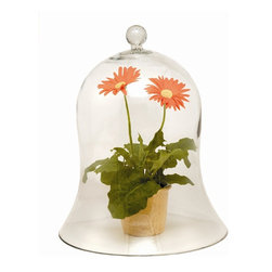 Achla - Extra Large Glass Bell Jar - * Finish: Clear Glass. 14.5 in. Dia x 17 in. H