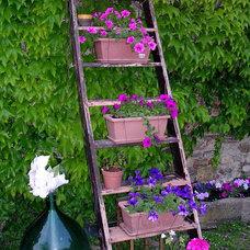Tuscany Ladder