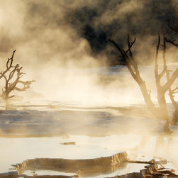 Travertine Terraces, Mammoth Hot Springs by Brad Mitchell - A painterly vision of the Hot Springs in Yellowstone National Park. About $650 for a 32 x 24 inch piece. Available in other sizes. Visit http://www.printedart.com for more info